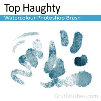 Photoshop Watercolour Brush for digital artists 'Top Haughty'