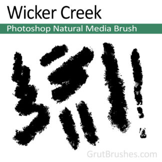Photoshop Natural Media Brush for digital artists 'Wicker Creek'