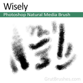 Photoshop Natural Media Brush for digital artists 'Wisely'