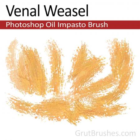 Venal Weasel - Impasto Oil Photoshop Brush
