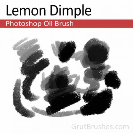 Lemon Dimple - Photoshop Oil Brush