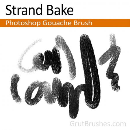 Strand Bake - Photoshop Gouache Brush