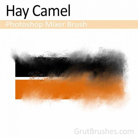 Hay Camel - Photoshop Mixer Brush