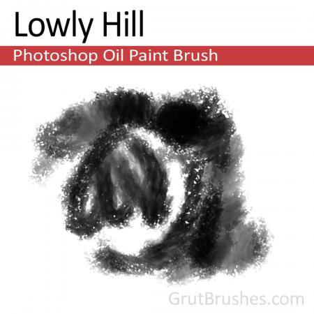 Lowly Hill - Photoshop Oil Brush
