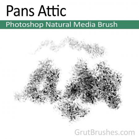 Pans Attic - Photoshop Natural Media Brush