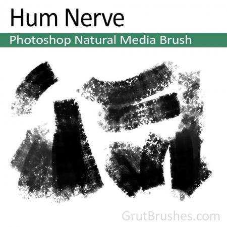 Hum Nerve - Photoshop Natural Media Brush