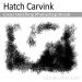 Hatch Carvink - Cross Hatching Photoshop Brush
