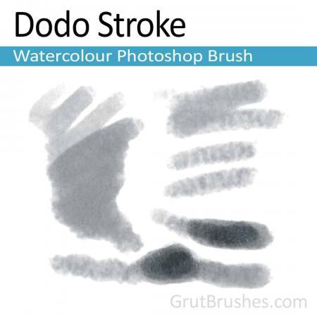 Dodo Stroke - Photoshop Watercolor Brush