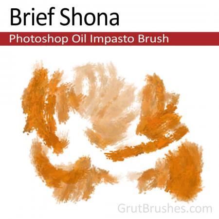 Brief Shona - Impasto Oil Photoshop Brush
