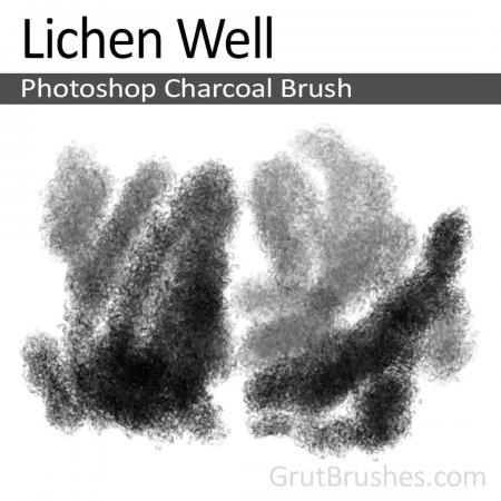 Lichen Well - Photoshop Charcoal Brush
