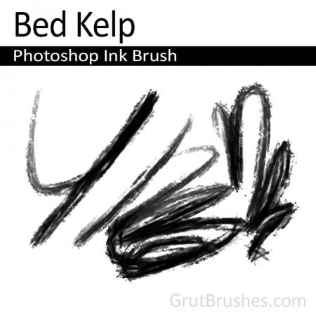 Bed Kelp - Photoshop Ink Brush