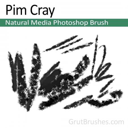 Pim Cray - Photoshop Natural Media Brush
